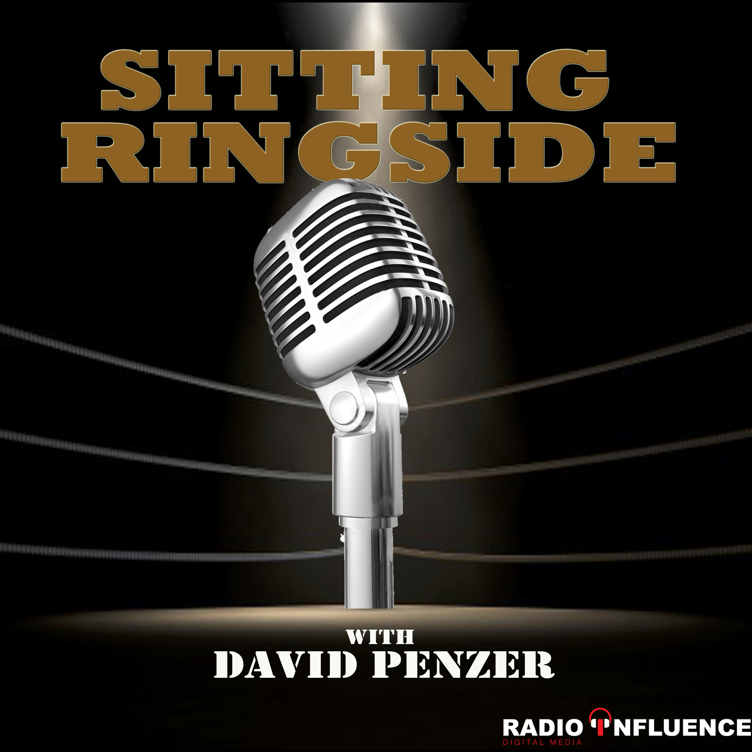 pod|fanatic | Podcast: Sitting Ringside with David Penzer
